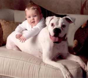 Cane Bay Summerville - Dog and Baby