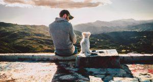 Cane Bay Summerville - Dog Follows Your Around
